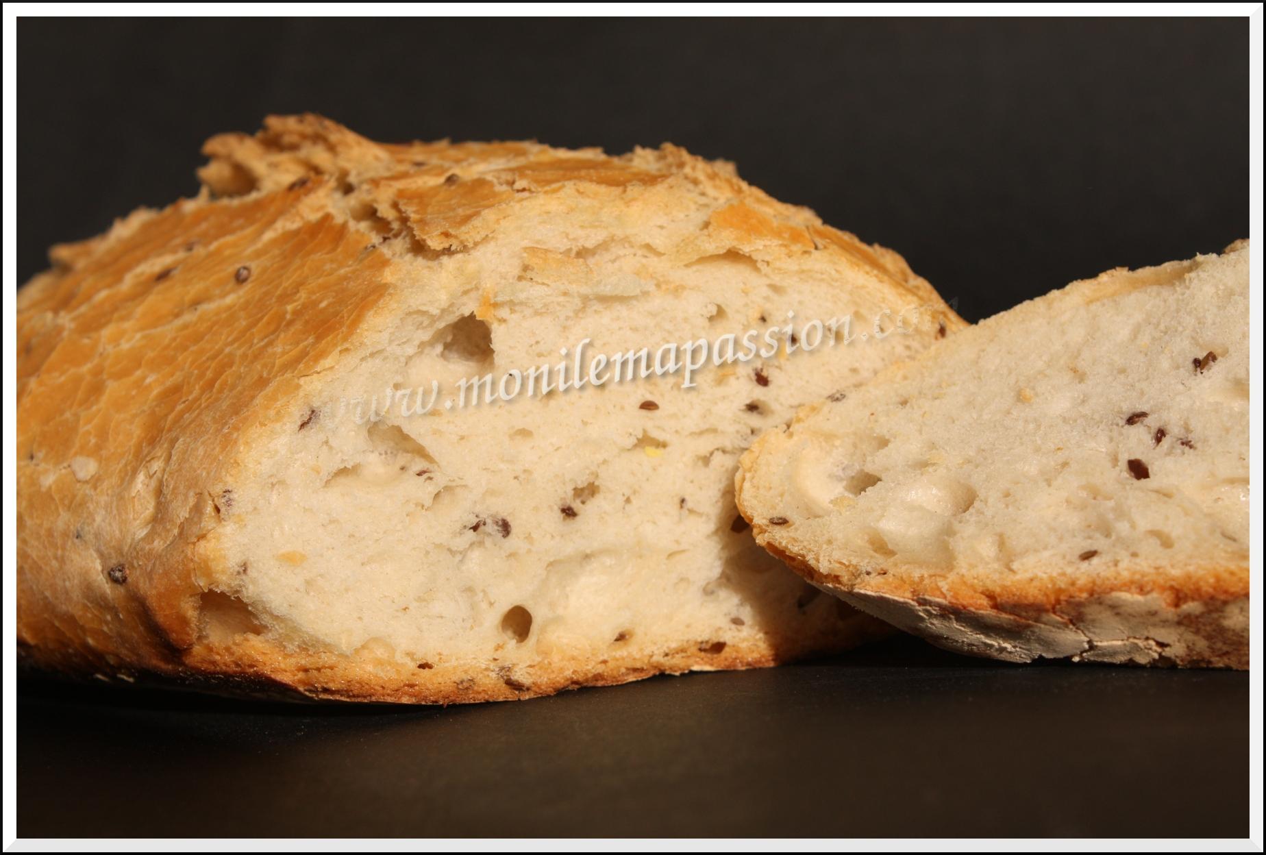 pain aux graines de lin et farine t65 mon le ma passion. Black Bedroom Furniture Sets. Home Design Ideas
