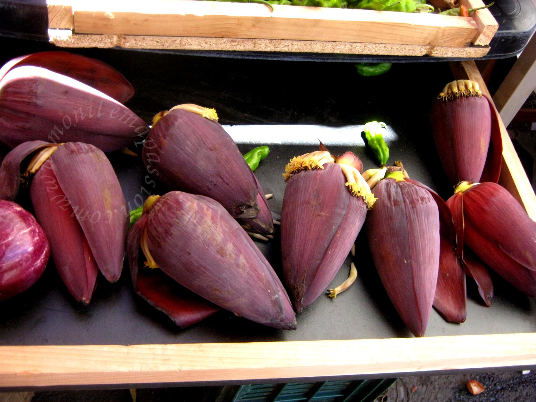 Le marché forain de Saint-Pierre – Saint Peter's farmers' market
