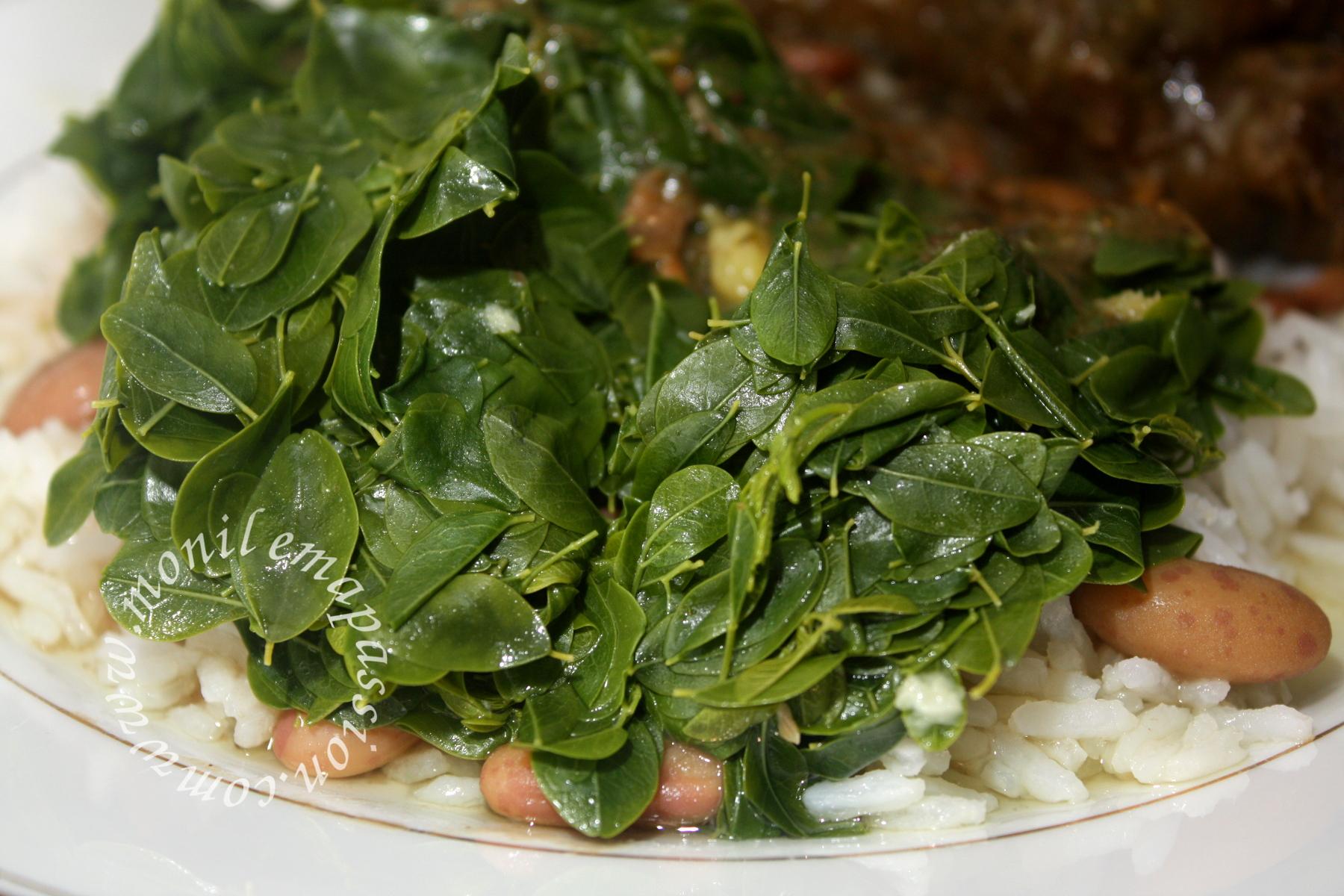 Bouillon de brèdes mourong – Moringa broth